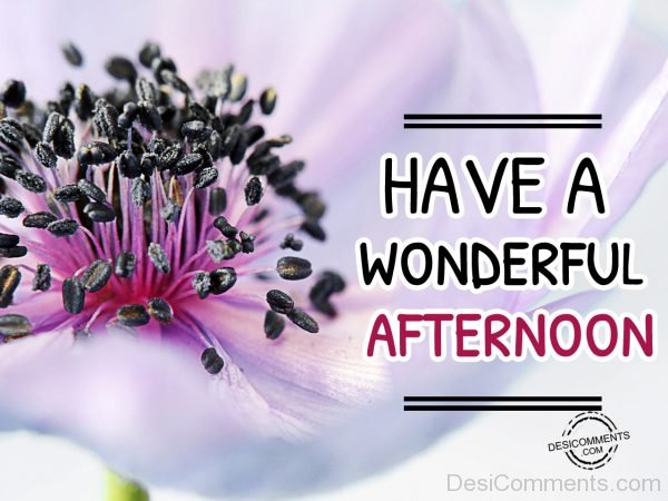 Picture Of Have A Wonderful Afternoon 00