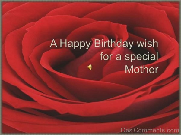 A Happy Birthday Wish For A Special Mother