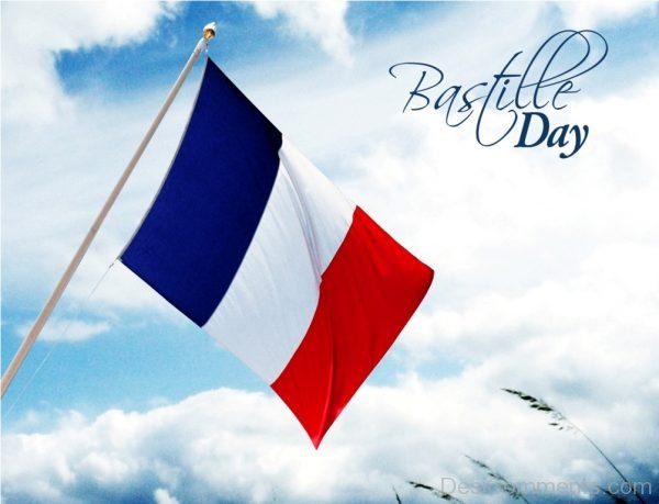 Awesome Pic Of Bastille Day
