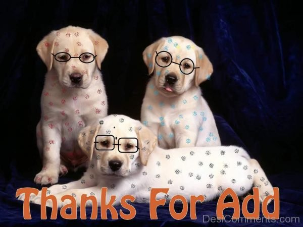 Awesome Pic Of Thanks For Add