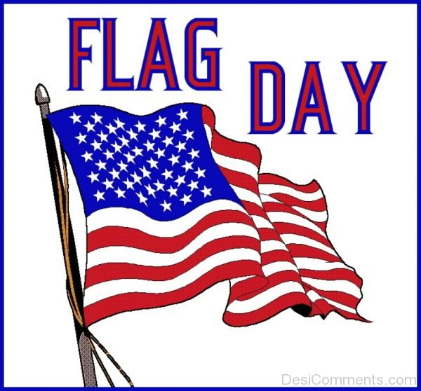 Beautiful Flag Day Pic