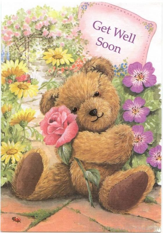 Beautiful Pic Of Get Well Soon