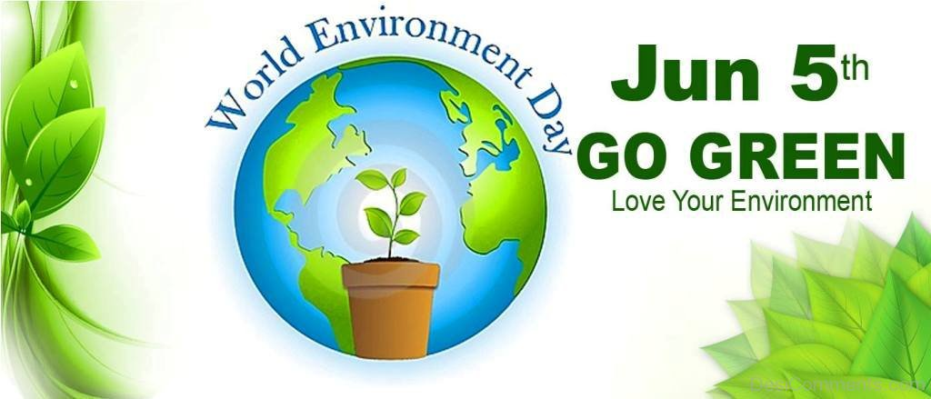 Essay on world nature conservation day