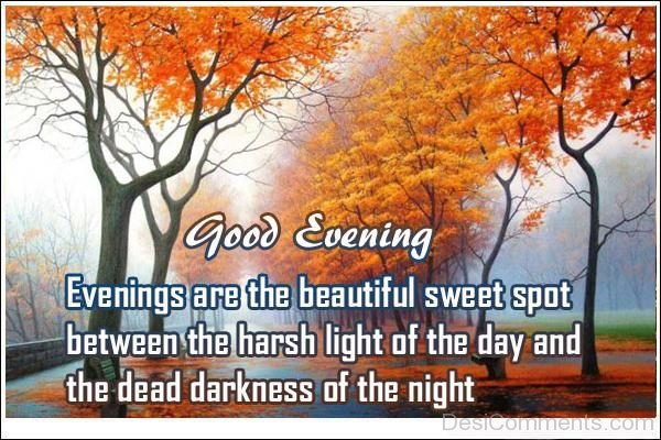 Evening Are The Beautiful Sweet Spot Between The Harsh Light Of The Day