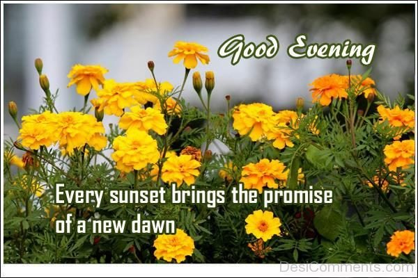 Every Sunset Brings THe Promise At The New Dawn