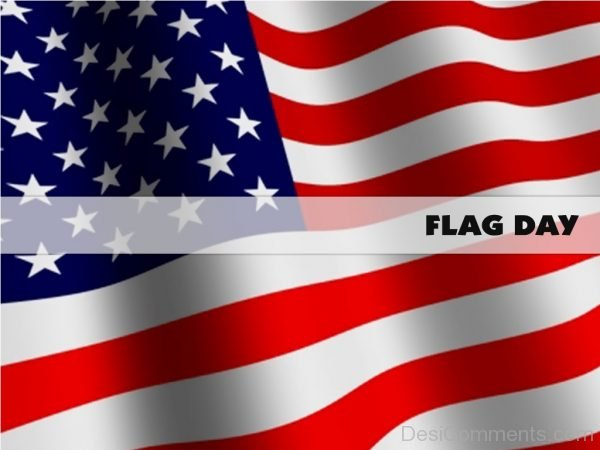 Flag Day Image