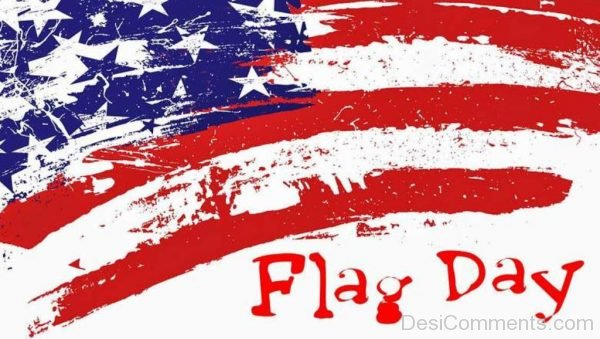 Flag Day Pic