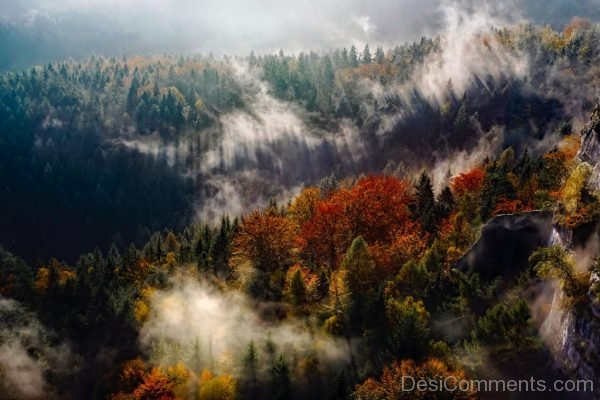 Germany Mountains Fog Autumn Fall Forest Trees