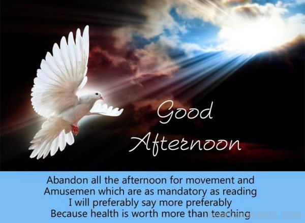 Good Afternoon - Abondon All The Afternoon For Movement