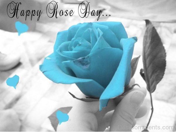 Happy Rose Day Blue Image