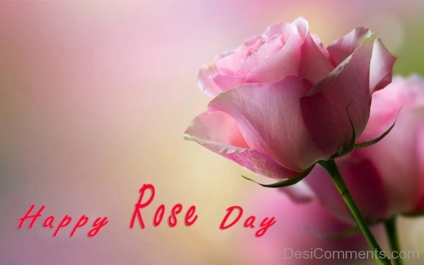 Happy Rose Day Cute Pic