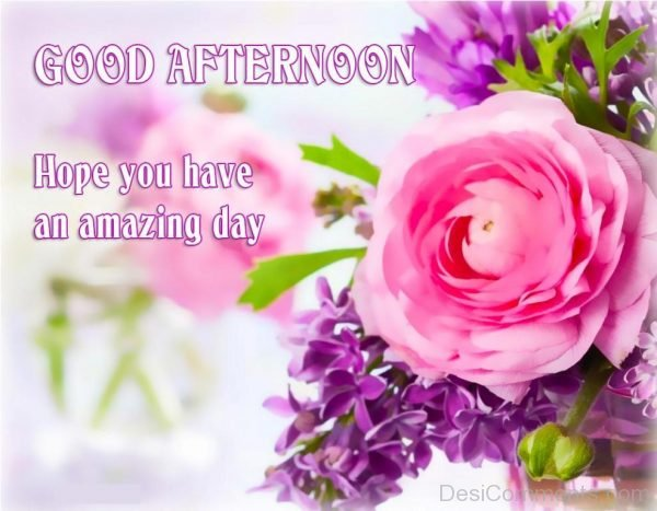 Hope You Have An Amazing Day - Good Afternoon