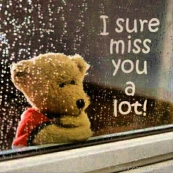 Picture: I Sure Miss You A Lot !