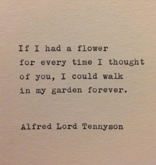 If I Had A Flower For Every Time