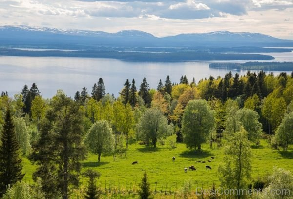 Landscape Mountains Sweden View Nature