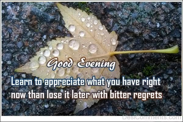 Learn To Appreciate What You Have Right NOw Than Lose It Later With Bitter Regrets