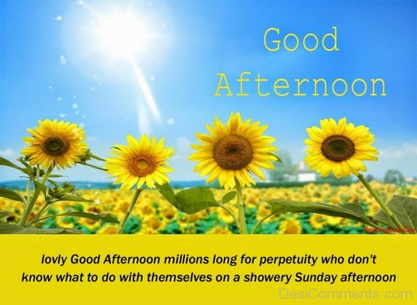 Lovely Good Afternoon Millions Long For Perpetuity Who Dont Know What To Do With Themselves On A Showery Sunday Afternoon