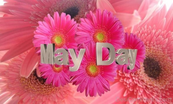 Lovely Pic Of May Day