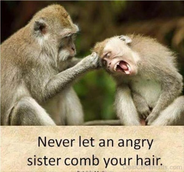 Never Let An Angry Sister Comb Your Hair