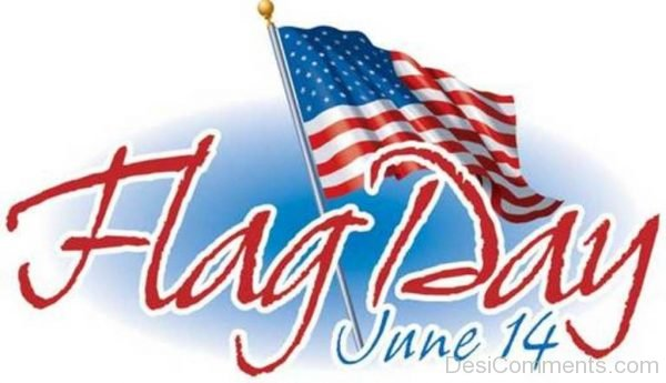 Pic Of Flag Day