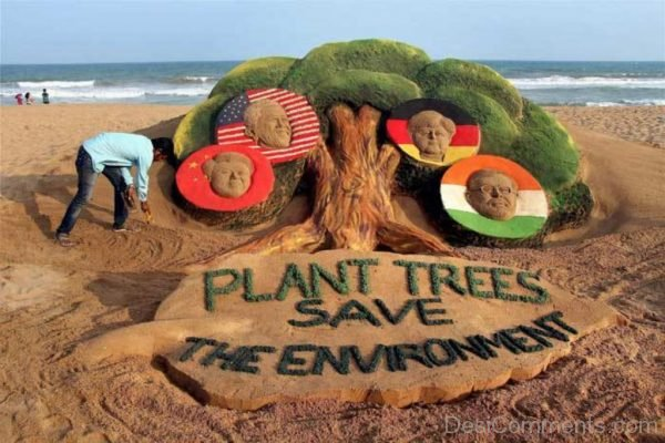 Plant Trees Save The Environment