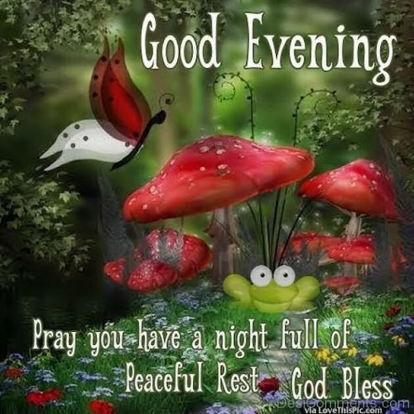 Pray You Have A Night Full Of Peaceful Rest