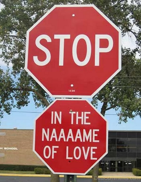 Stop In The Naaaame Of Love