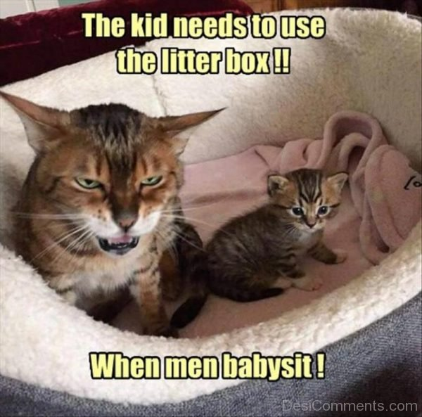 The Kid Needs To Use The Litter Box