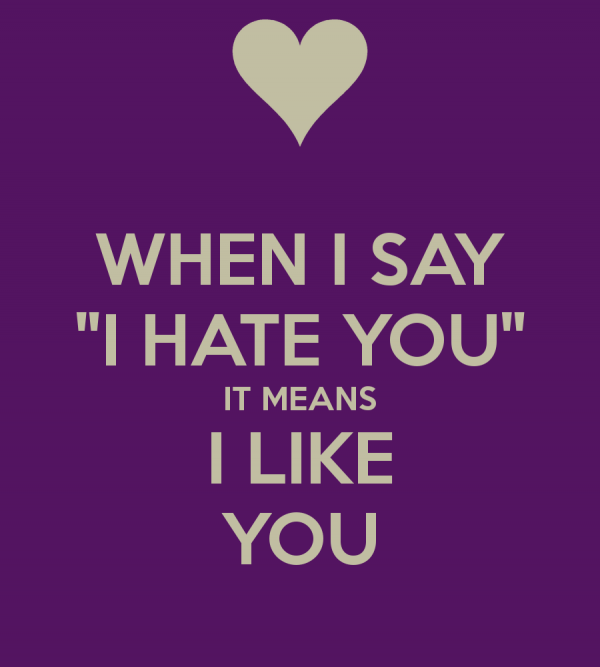 When I Say I Hate You It Means I Like You