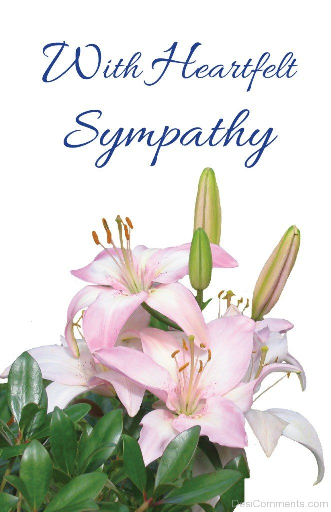 Sympathy Pictures, Images, Graphics - Page 2