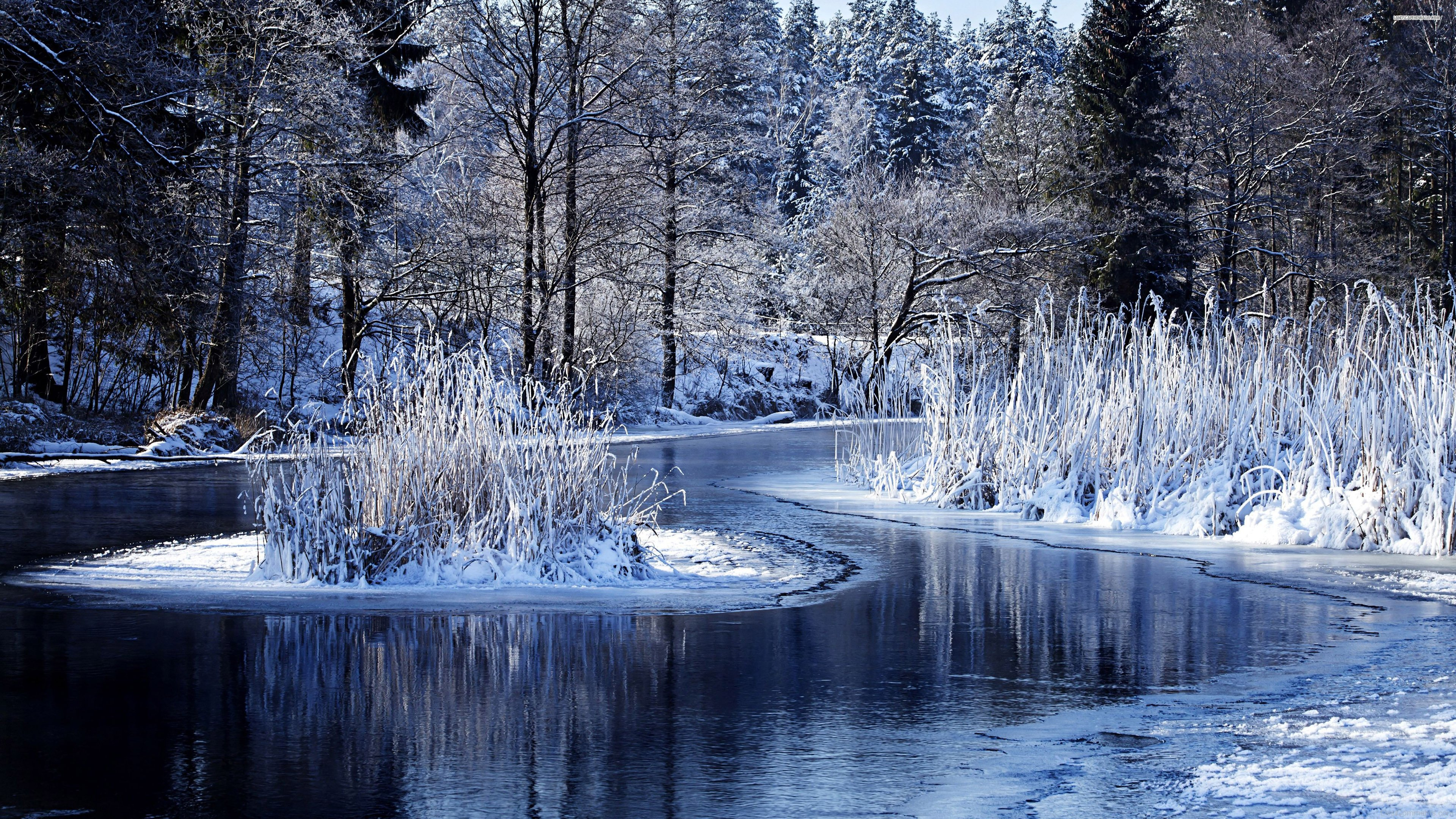 4k Nature Wallpaper Winter France: Winter Pictures, Images, Graphics