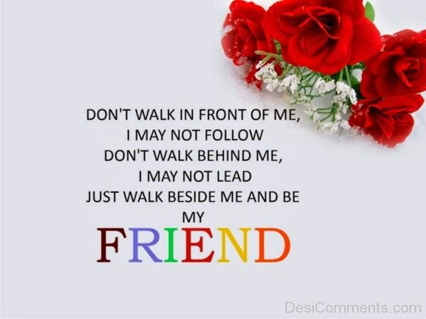 Don't Walk In Front Of Me