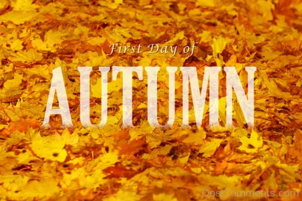 First Day Of Autumn