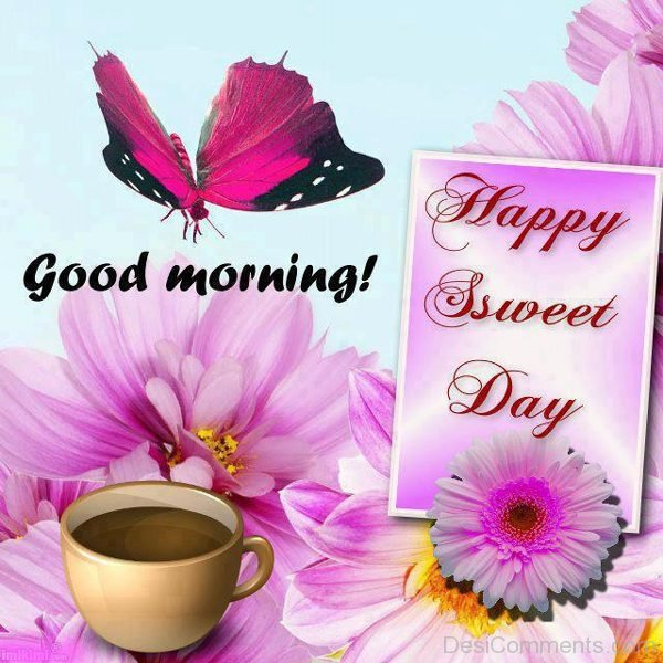 Good Morning Happy Sweet Day