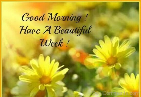 Good Morning Have A Beautiful Week