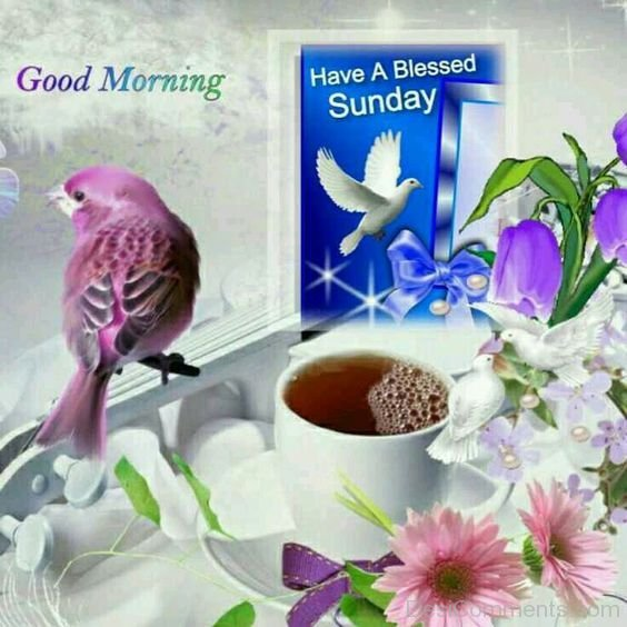 Good Morning And Happy Sunday Sms : Good morning have a blessed sunday image desicomments