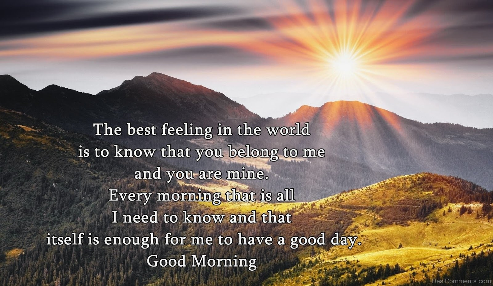 Good Morning Have A Good Day Desicomments