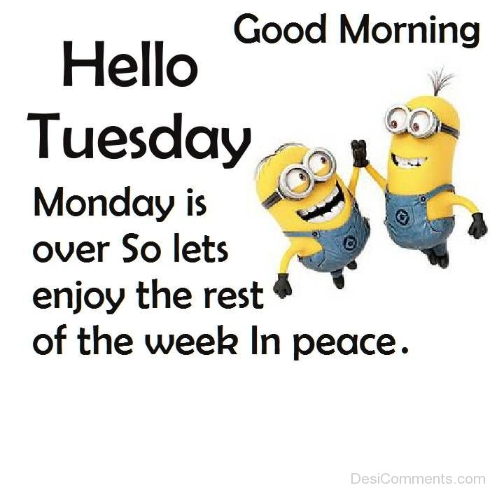 Good Morning Hello Tuesday