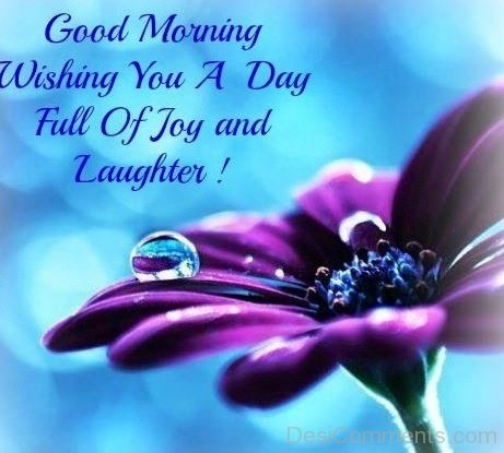 Good Morning Wishing You A Day Full Of Joy