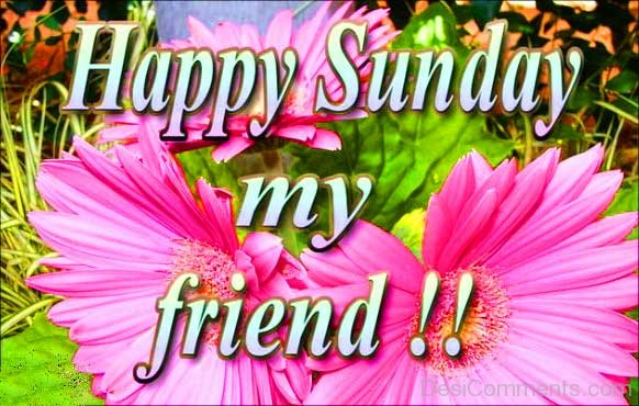 Happy Sunday My Friend !!