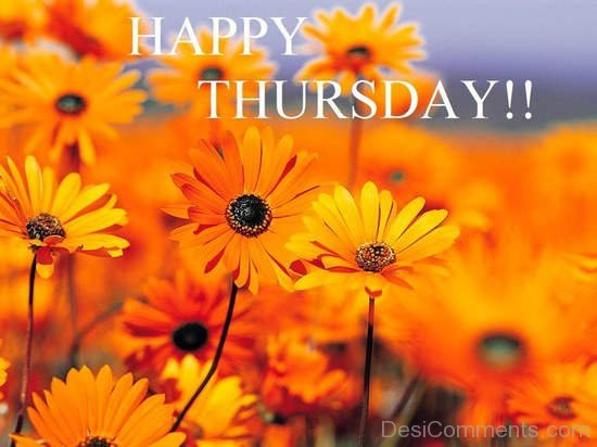 Happy Thursday !!