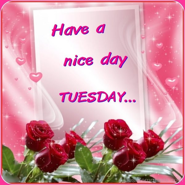 Have A Nice Day Tuesday