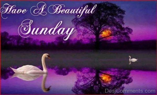 Have & Beautiful Sunday