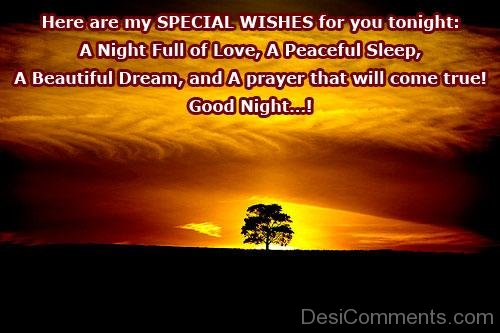 Here Are My Special Wishes For You Tonight