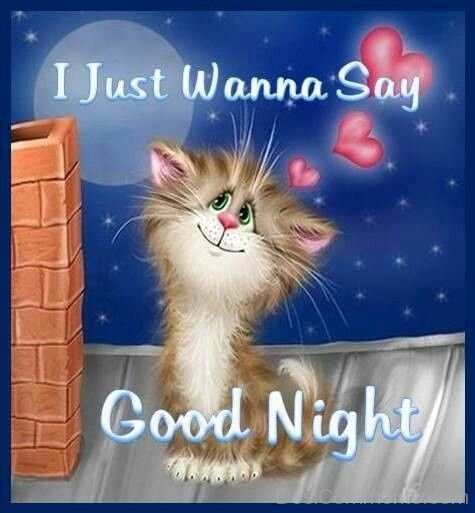 I Just Wanna Say Good Night