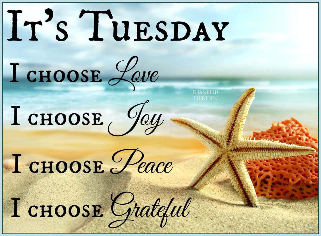 Its Tuesday Tuesday - DesiC...
