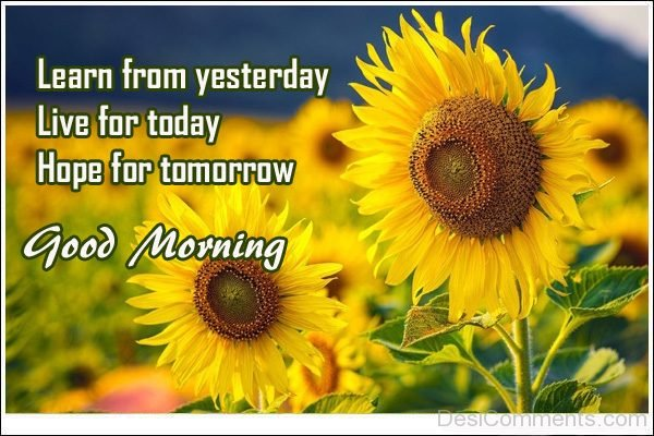 Learn From Yesterday Good Morning