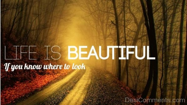 Life Is Beautiful If You Know Where To Look