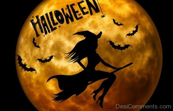 Lovely Pic Of Halloween