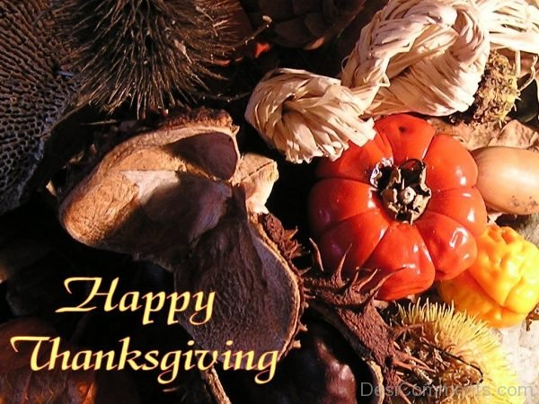Picture: Magnificent Pic Of Happy Thanksgiving